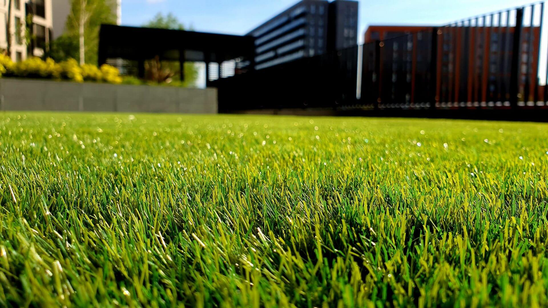 You need your lawn to represent your business with the highest level of professionalism.