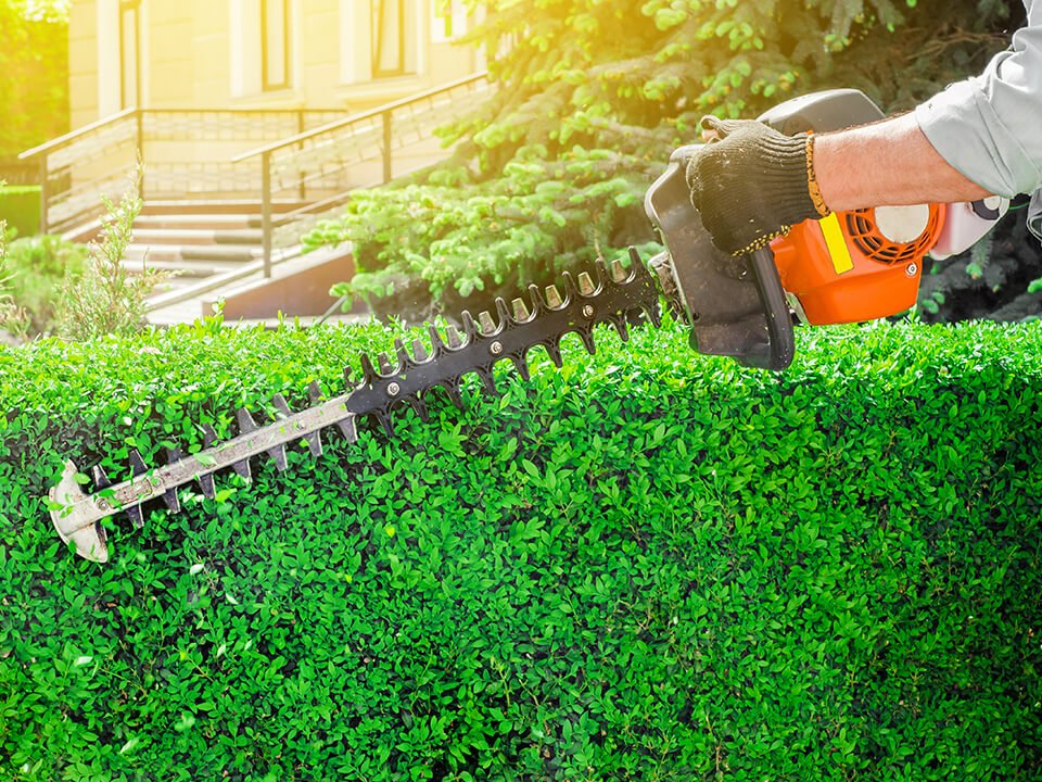 Rely on Schmigs Professional Lawn service for an impressive landscaping installation.